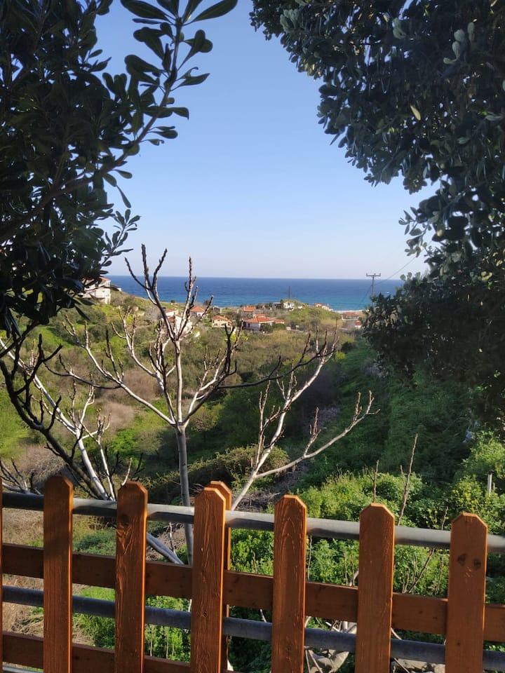 Icarian Studio 2 / Panoramic View of Kampos
