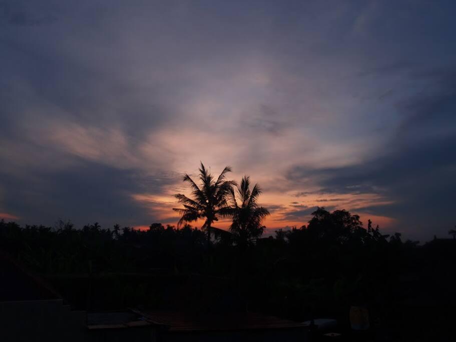 Sunrise each morning