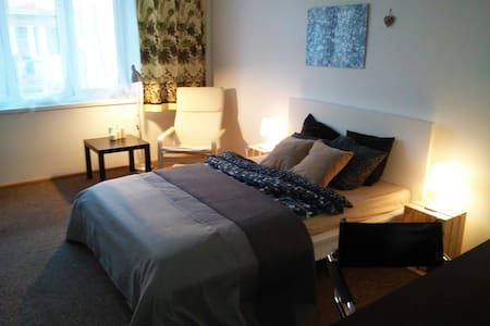 Cosy room 15 min walk from Old Town - Appartement