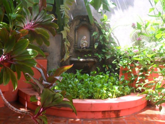 Guesthouse/ Garden Hotel El Nancite - León - Bed & Breakfast