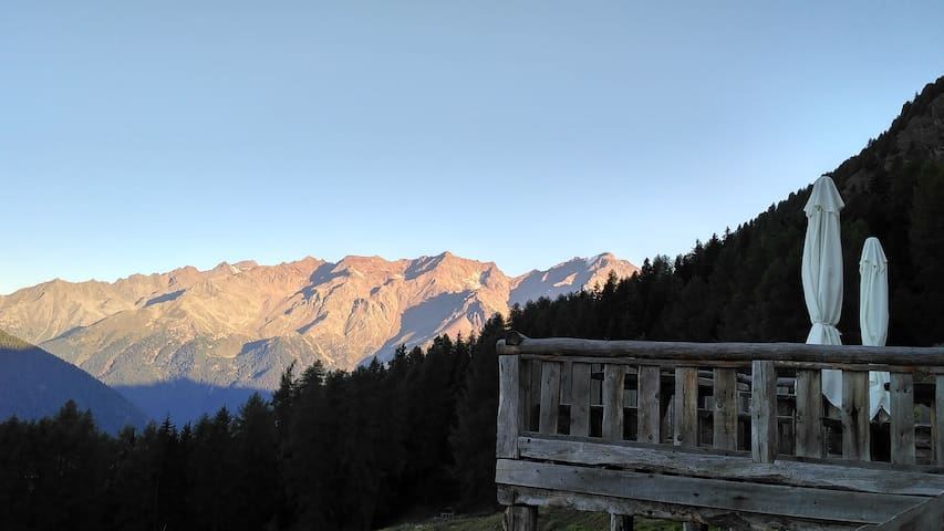 Panorama da  NestAlp- Malga Campo- Peio -Trentino