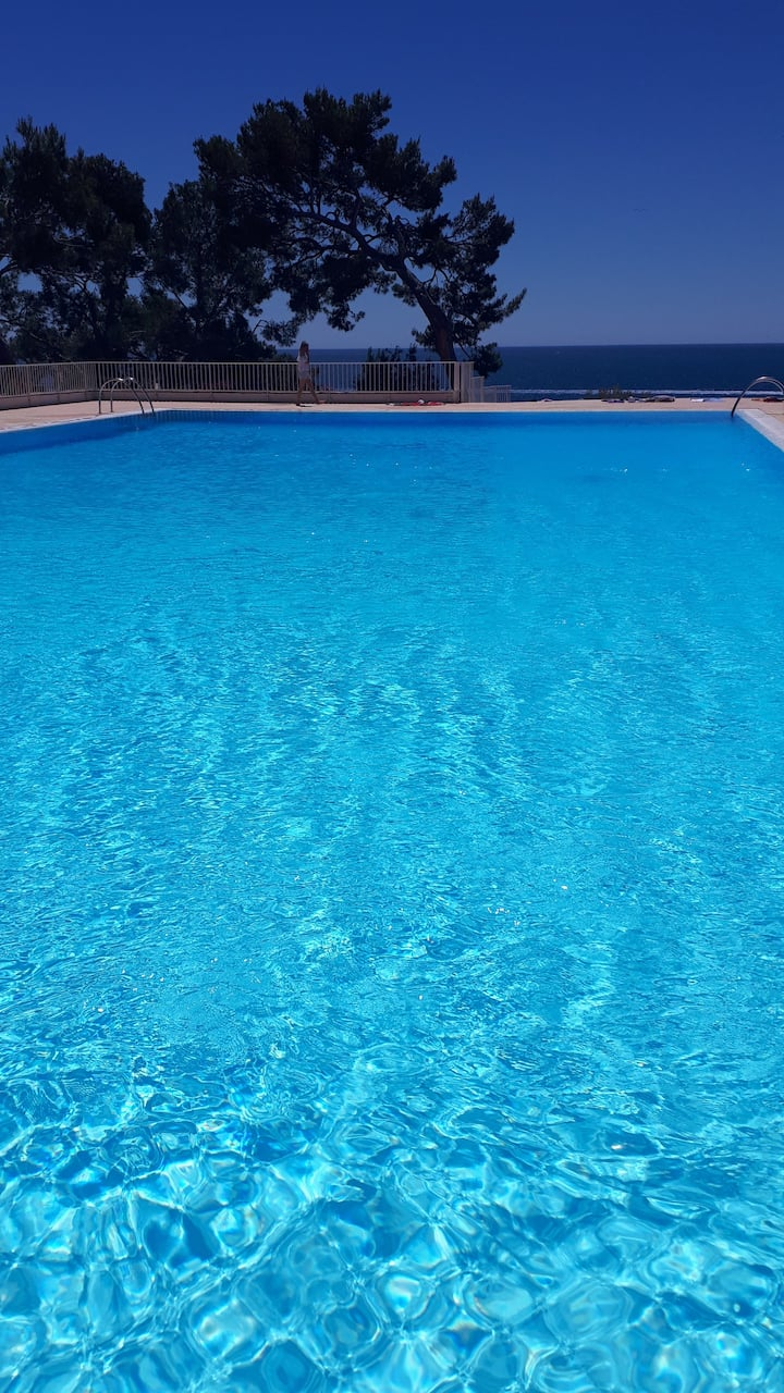 Studio avec piscine et accès privatif a la mer