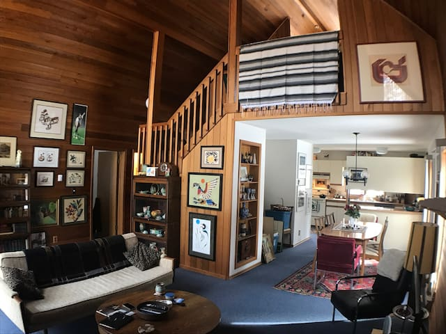 Funky 70's retreat with a lake view - Gimli - House
