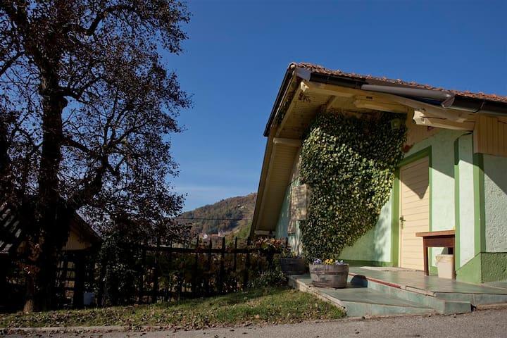 Vineyard cottage Gole - Hrastno - House