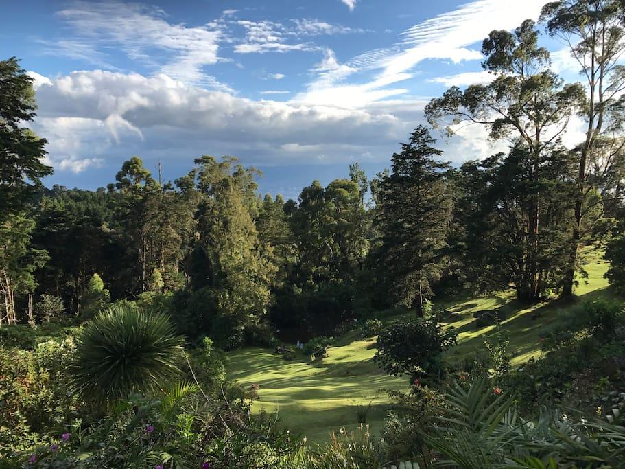 Vista desde el balcón la Cabaña