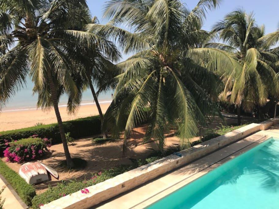 Terrain de pétanque sous les cocotiers