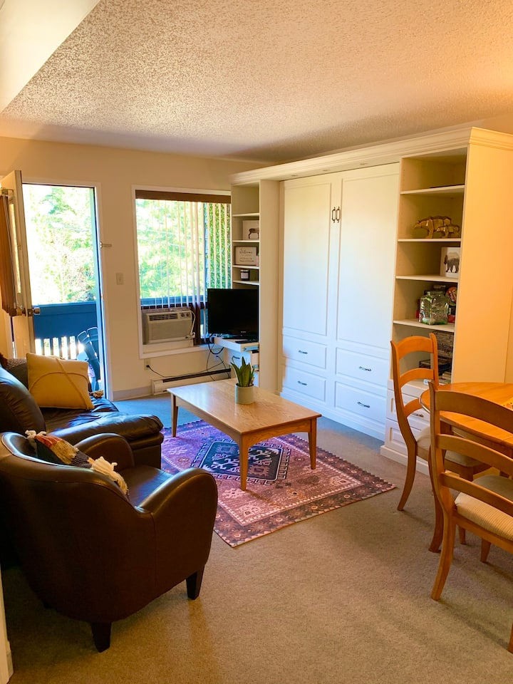 Relaxing ski in/out condo, sleeps 5, pool, hot tub