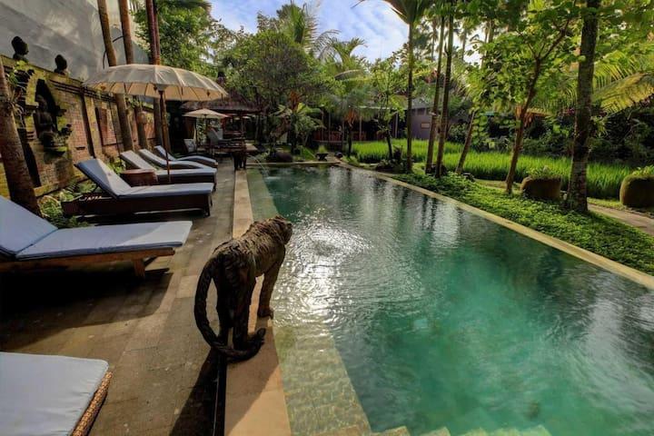 1 Deluxe Hotel Paddy View 2 People Ubud Bali