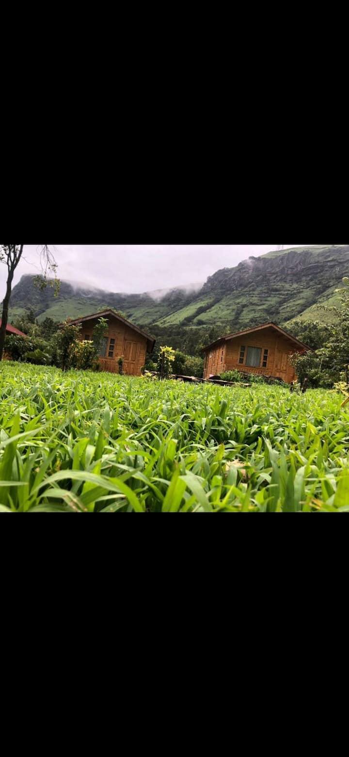 Manikyadhara homestay cottage 3