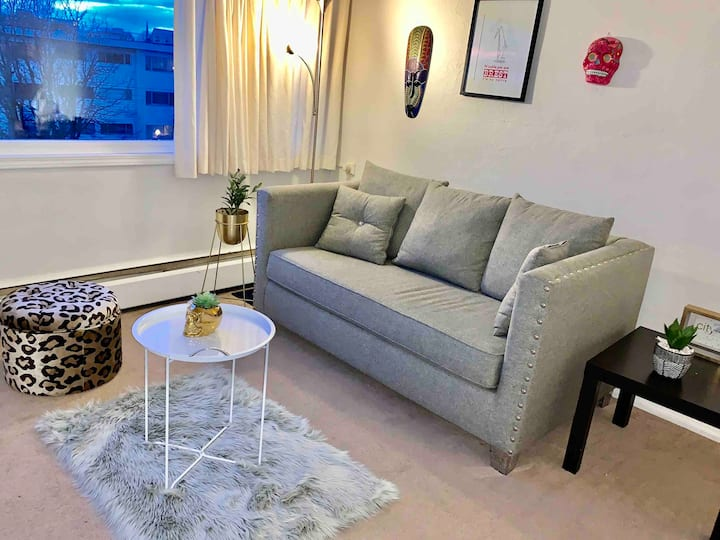 Beautiful apartment close to Downtown
