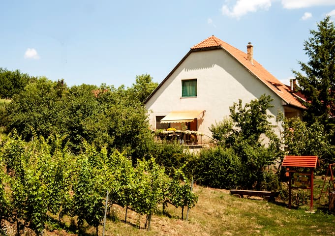 TerraceON-Hungarian Homestay in Tokaj Wine Region
