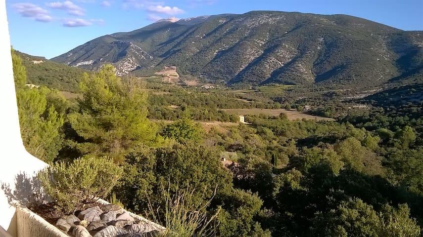 Provence-Ventoux. Studio avec piscine et panorama