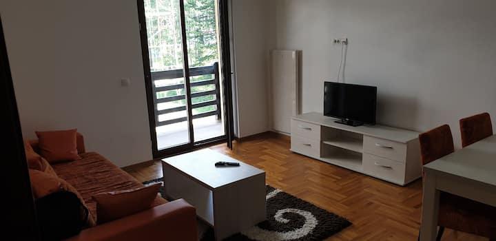 Cozy and quiet apartment near Zlatibor centre