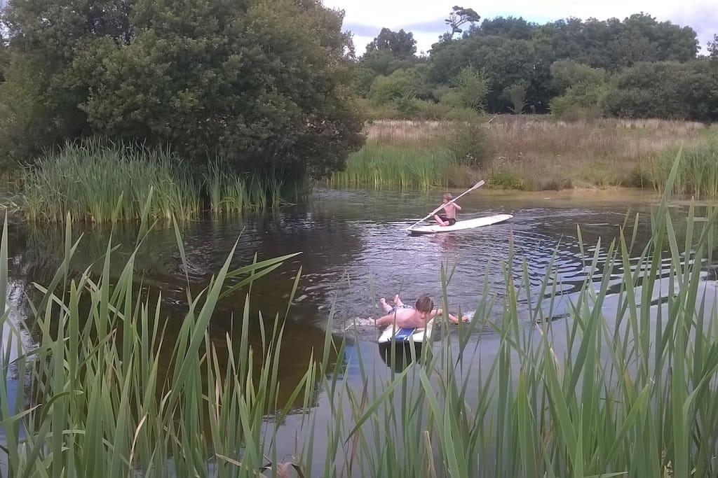 Fun on the farm pond