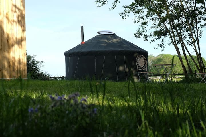 Farmyard Yurt