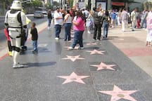 Heartbeat of Downtown LA