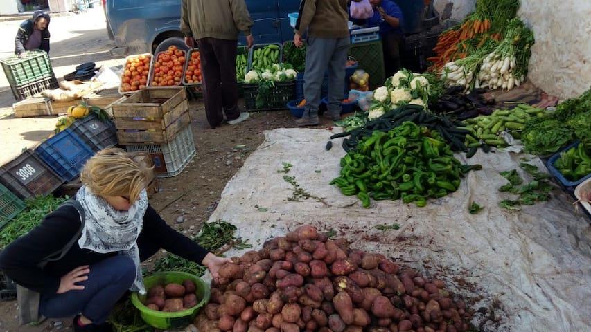 Riad N' Tayri  Proche plage