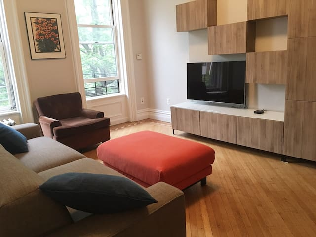 den with pullout kingsized sofa bed