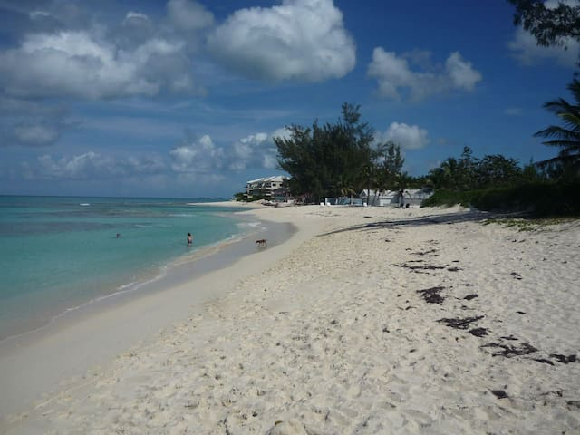 Island Condo 5 minutes from the beach & Ocean Club - Appartement