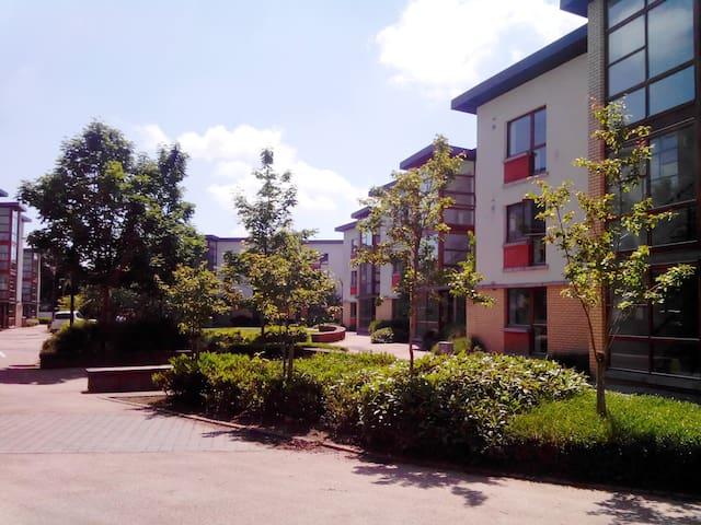 Apartment 37 Room 2 Shanowen Square