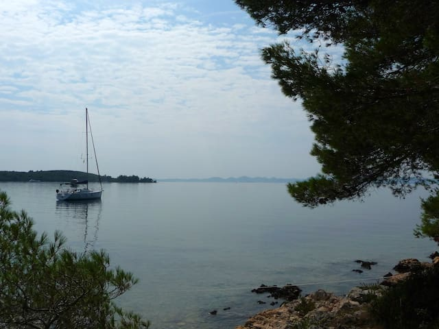 B&B on Dalmatian coast - Polača - Guesthouse