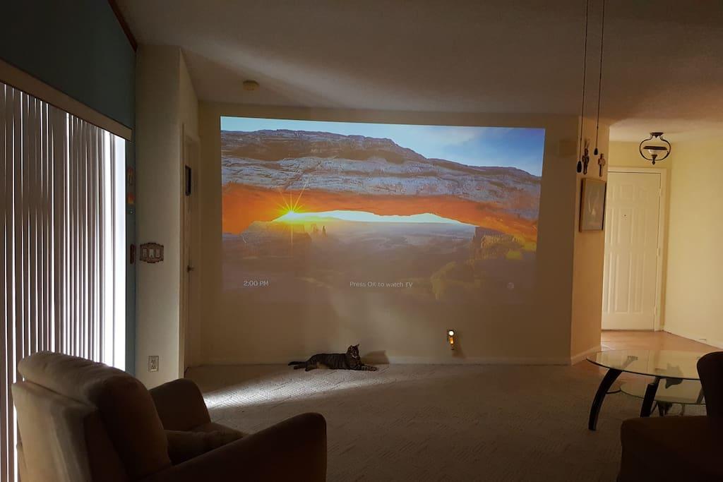 Full wall projector TV