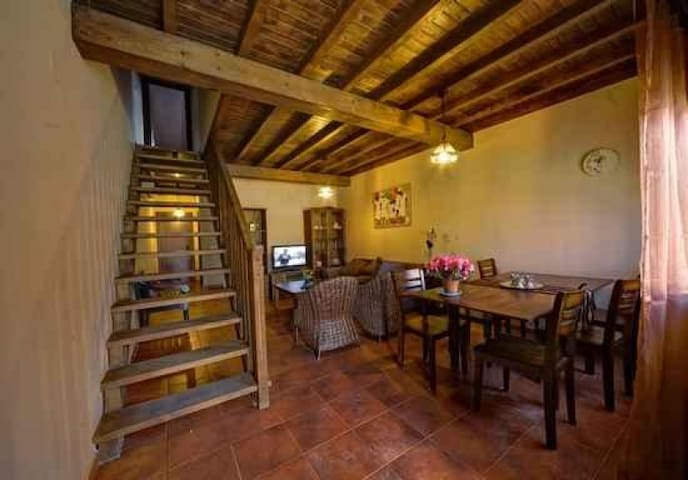 Holiday apartments JERTE PATHS
