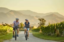With 16 winery cellar doors within 5km, hire a bike on site from Explore Marlborough at The Vines Village