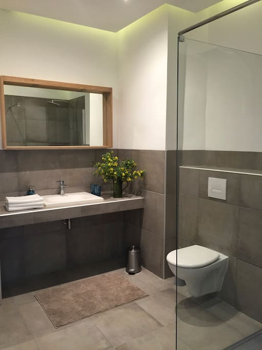 En suite large bathroom with a walk-in shower
