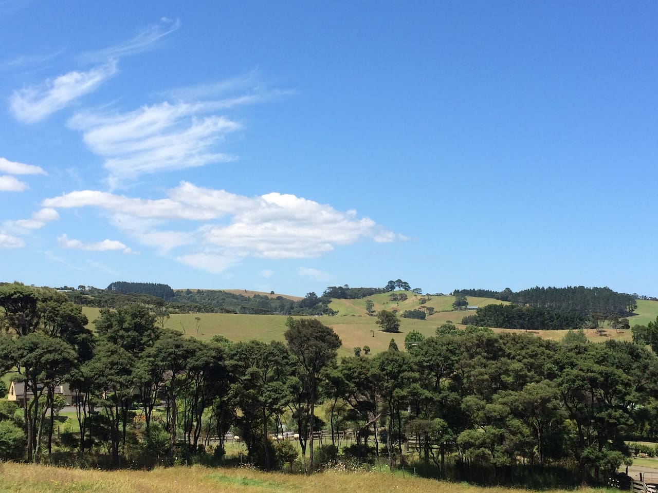 Rolling hills of Muriwai Valley