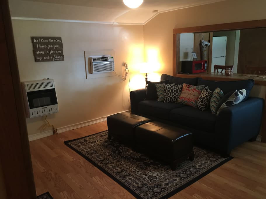 Living Room- full air mattress available- sleeps 2