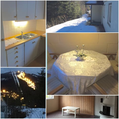 Big, cozy and light APT with garden - Nittedal