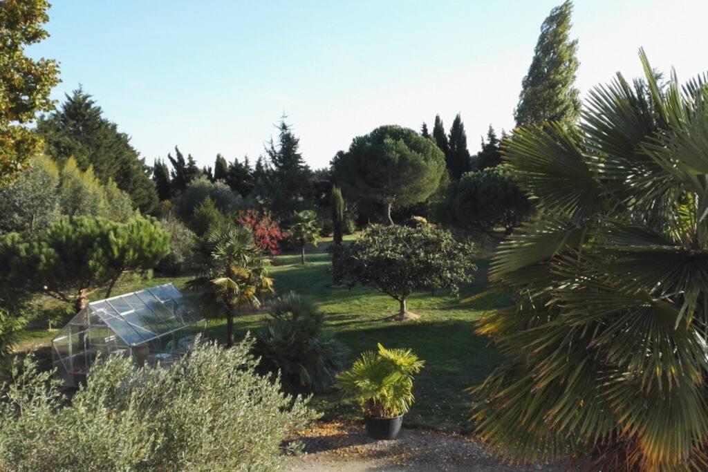 Jardin Privé / Private Garden