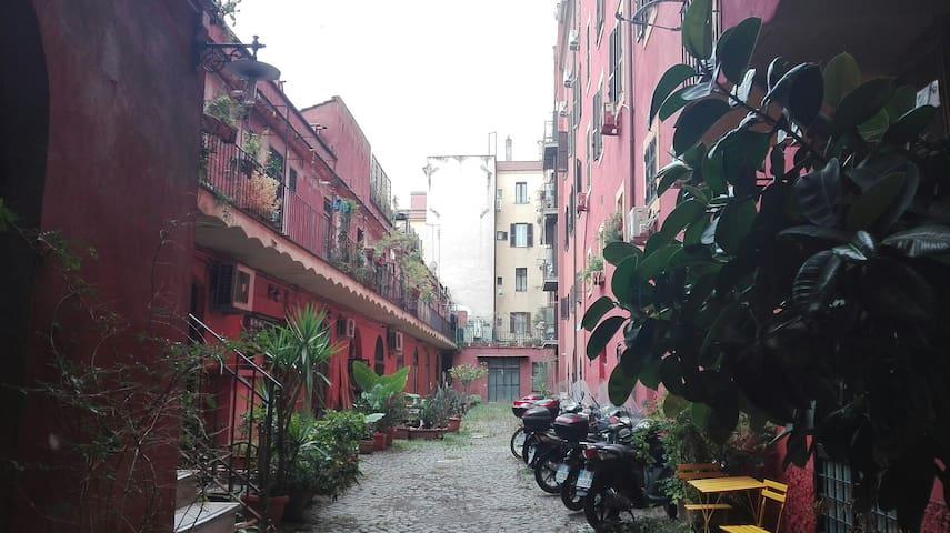 casina rossi