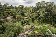 "Alley, Airbnb On-Line Guest Review:  ""This was my second trip to Ubud, and I knew I had to return back to Villa Cella Bella. The magic and beauty of the place only gets better and better....spectacular view, the insta-worthy pool and hammock..."""