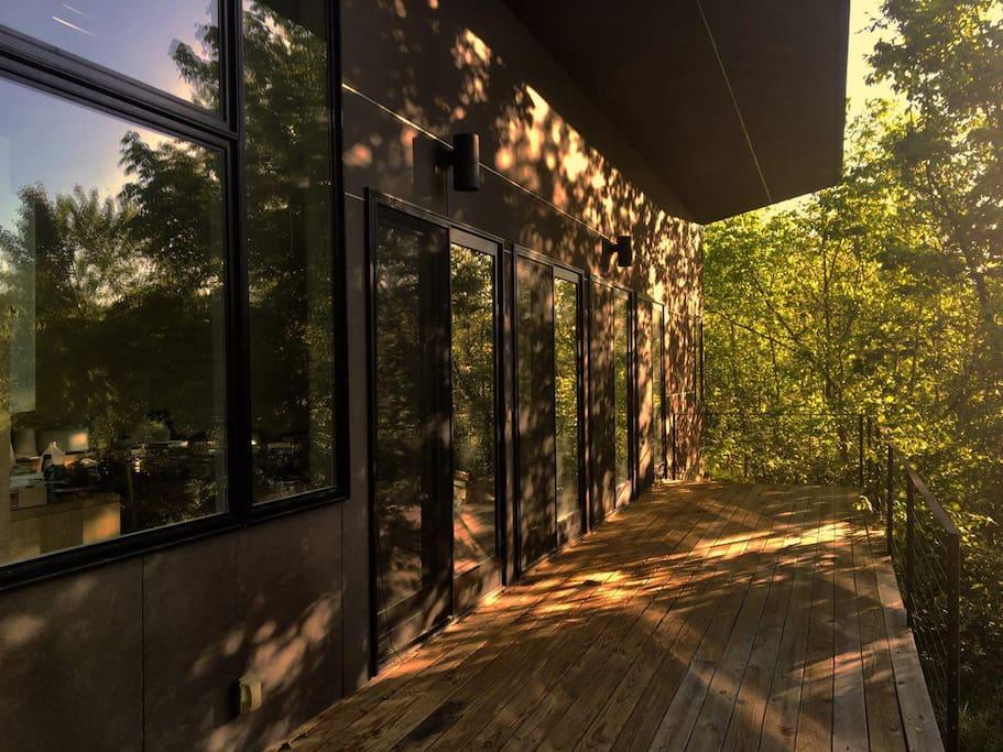 Back deck in the morning light