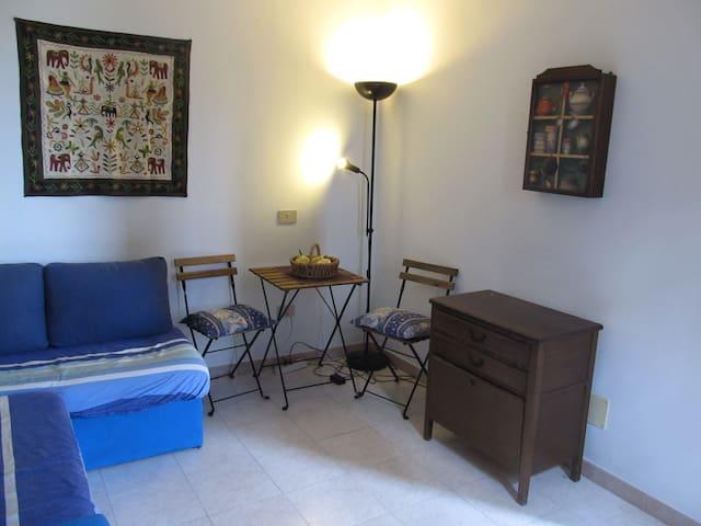 Stanza privata con bagno e ingresso indipendente - Bientina - Casa