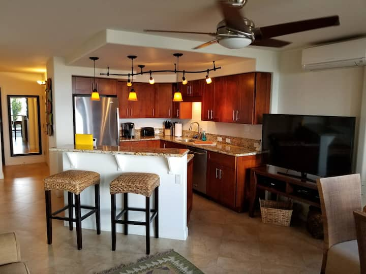 Grnd Floor Oceanfront Condo- Great View, A/C,Wi-Fi