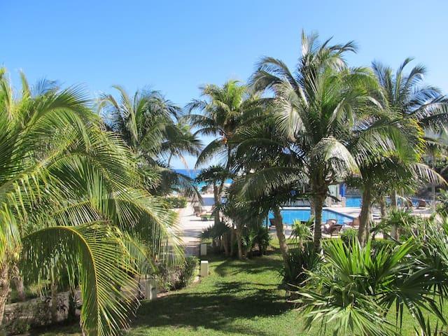 Fabulous studio on the Caribe Sea.