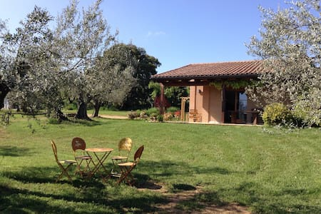 Studio surrounded by olivetrees! - Alquézar - Rumah