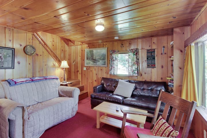 Lakefront cabin w/ a private dock, deck space, grill, and more - dogs welcome!
