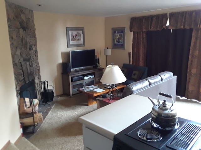 Bright Condo Oasis/ central with Garage Parking. SUN6