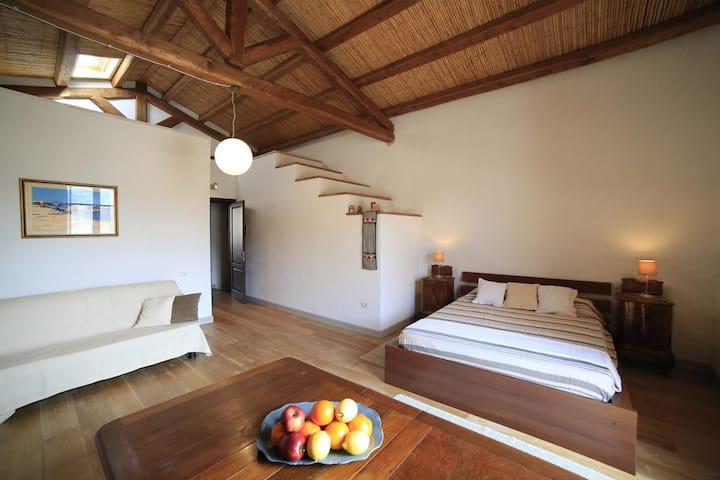 Luxury Loft Bosa Apartments Garden View