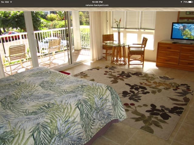 Private bedroom and bath, - Princeville  - Apartment