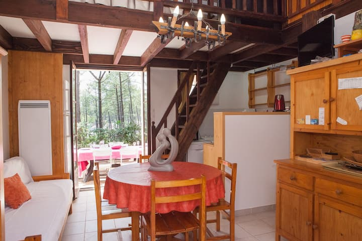 Nice little house on pines, 1 km from  sea,center