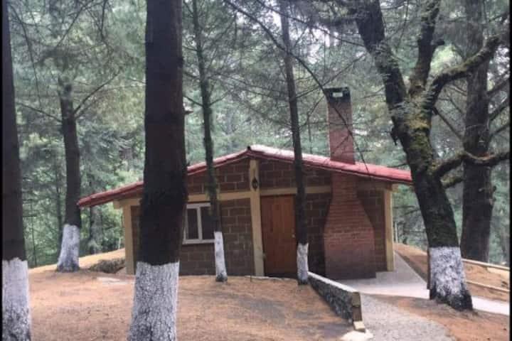 Cabaña Rústicas
