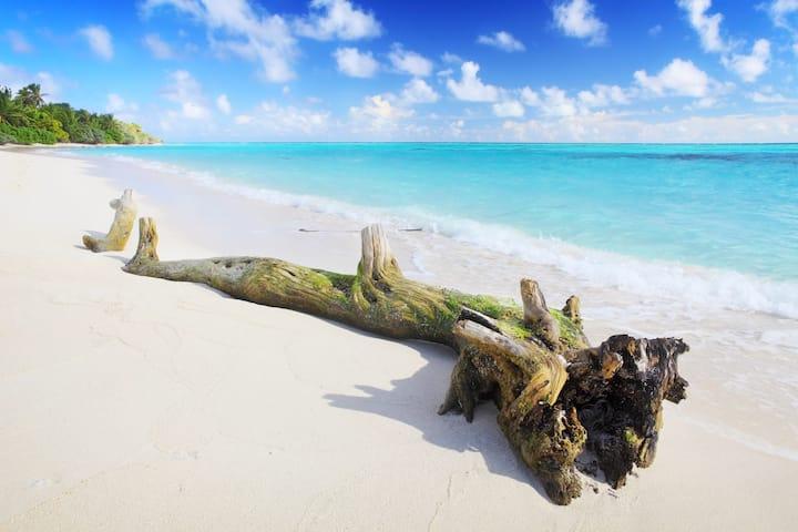 Holiday GRAND, Thoddoo Island, Maldives