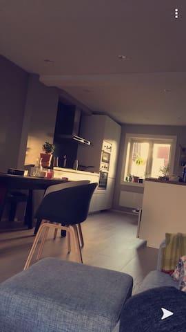 Nyoppusset leilighet sentralt i Drøbak sentrum