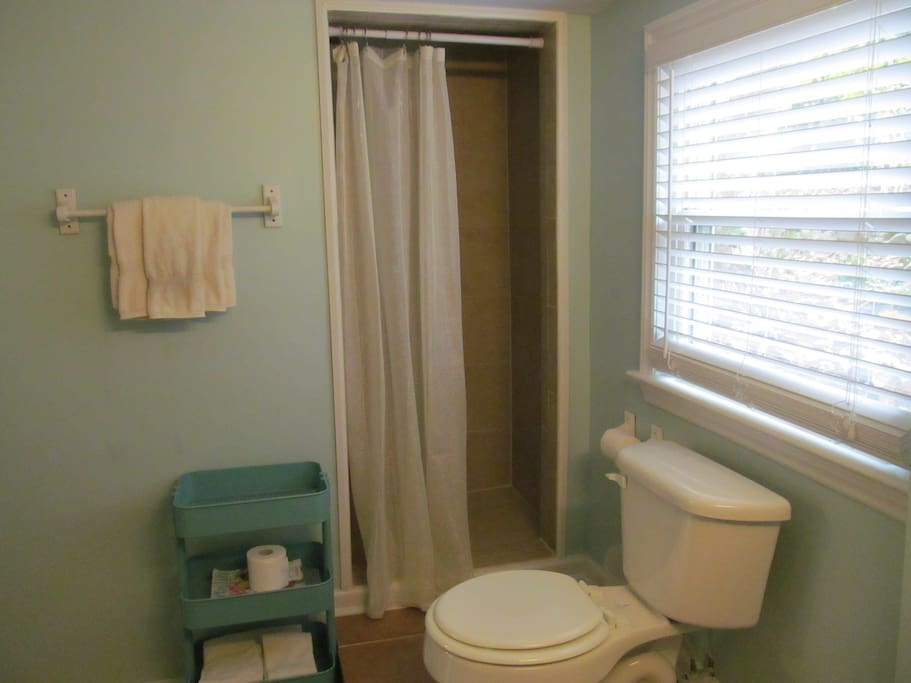 Private bathroom with a small shower and toilet.