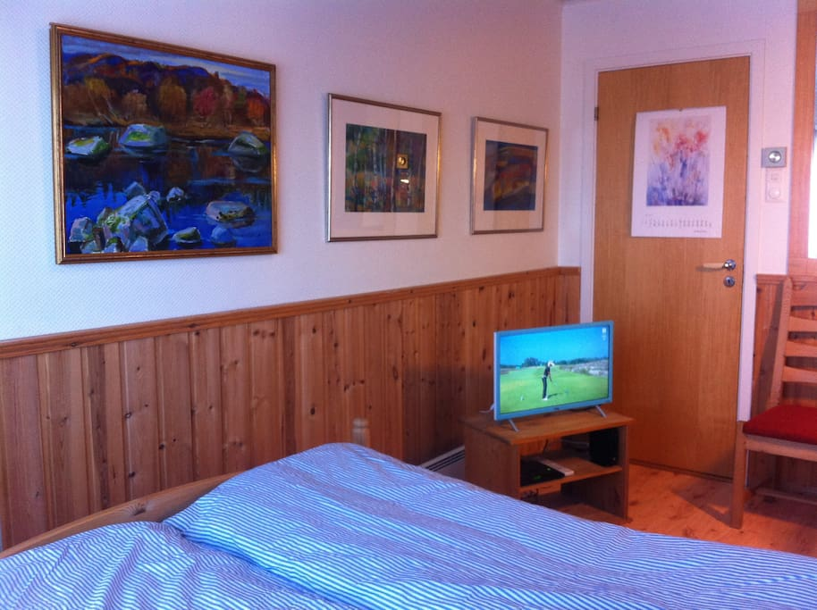 In the room you will have Wireless internet, work desk,TV and beautiful art.
